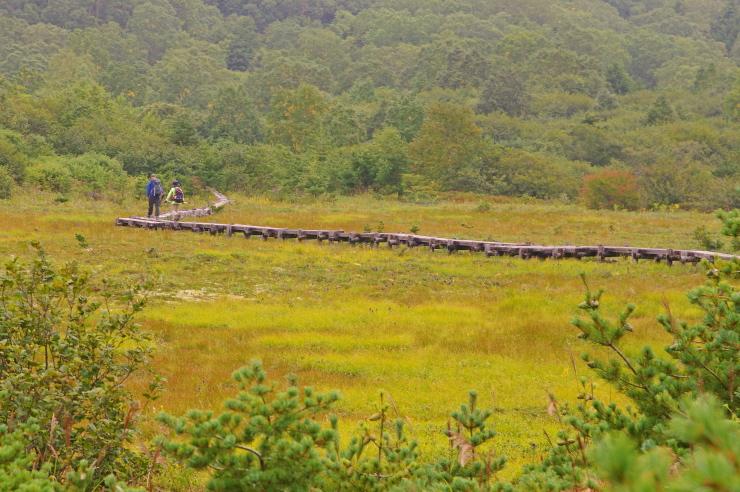 秋の浄土平湿原