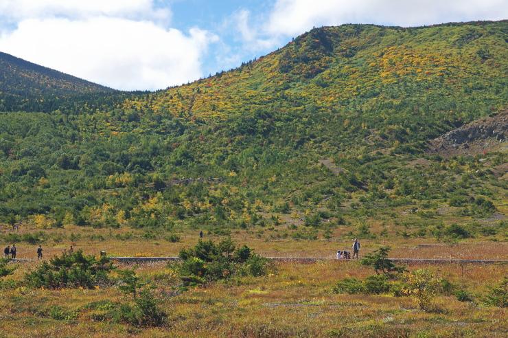 蓬莱山の黄葉を望む