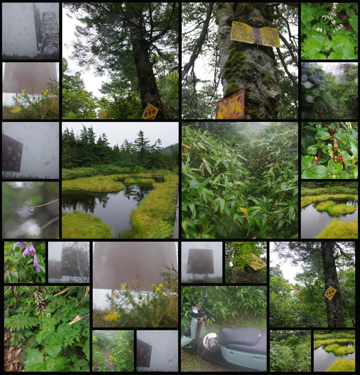2015.08.21 雨の高山