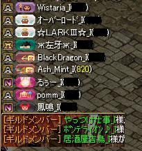 2015930コットン集まり+シャルルЛ