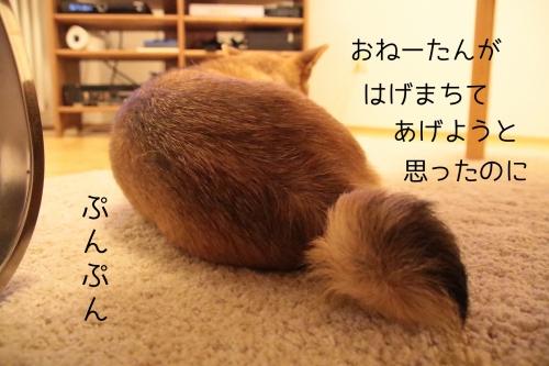 ぷんぷんセナ
