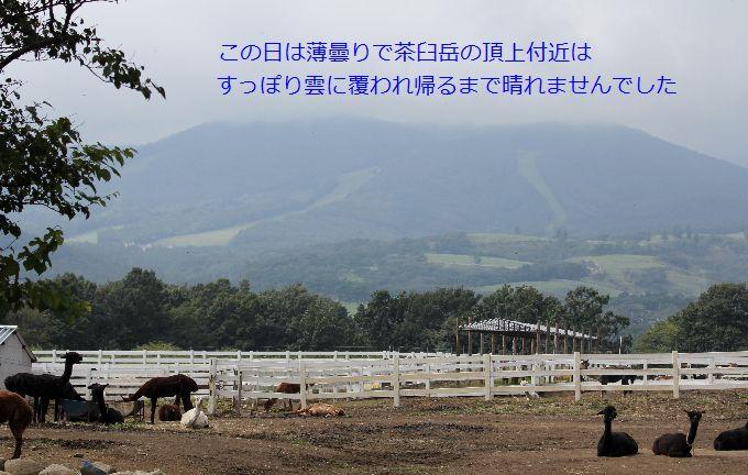 牧場から茶臼岳を見る