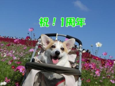 15.10.21③