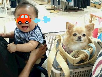 blog2015091601.jpg