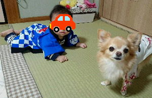 blog2015100103.jpg
