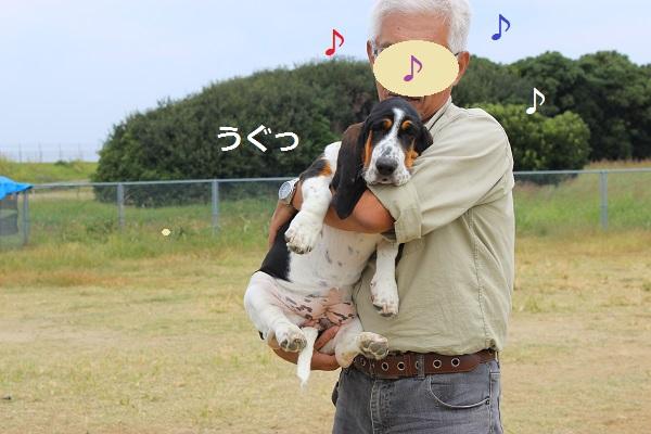 2615 ノンさんちゃん