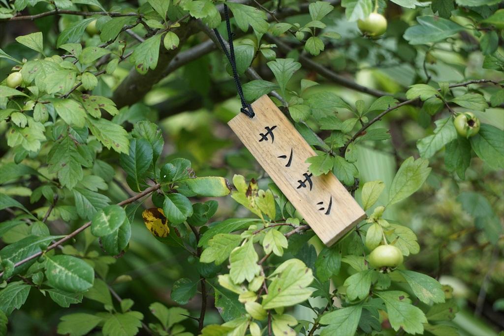 本館脇の花園_5