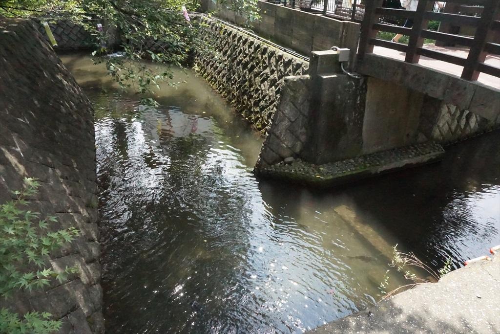田用水堰_1