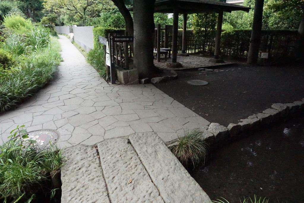 右側に入った辺りが『真姿の池湧水群』_1