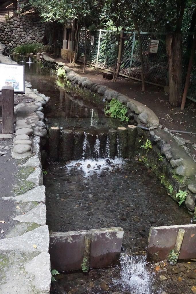 湧水源_2
