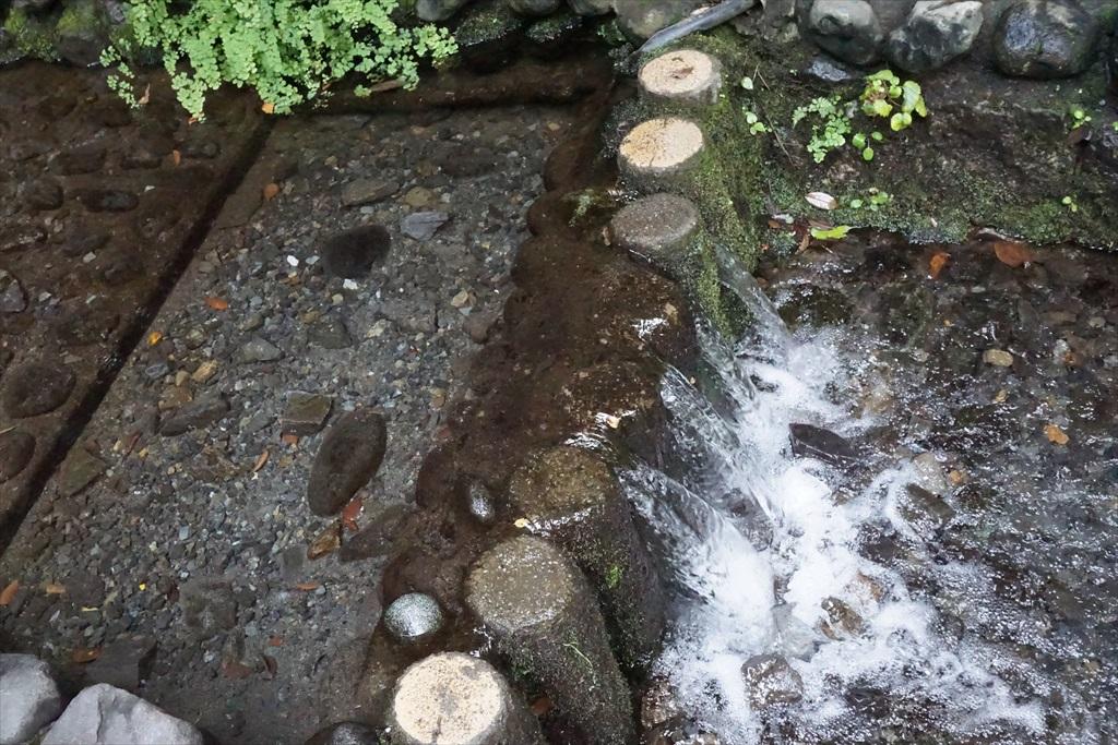 湧水源_4