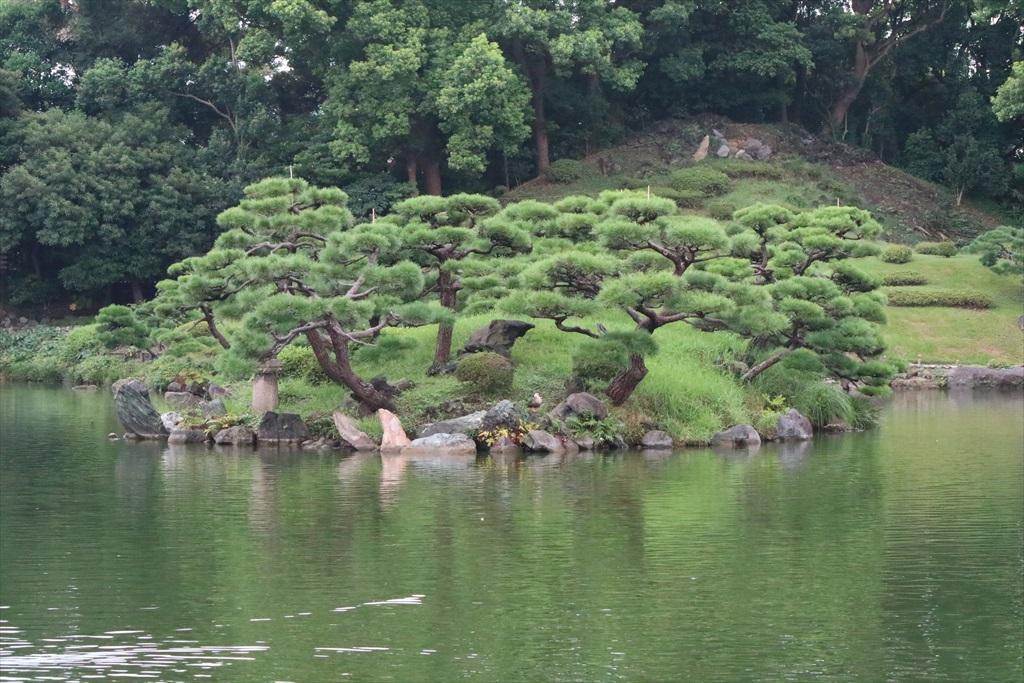 美しい池の景観(1)_2