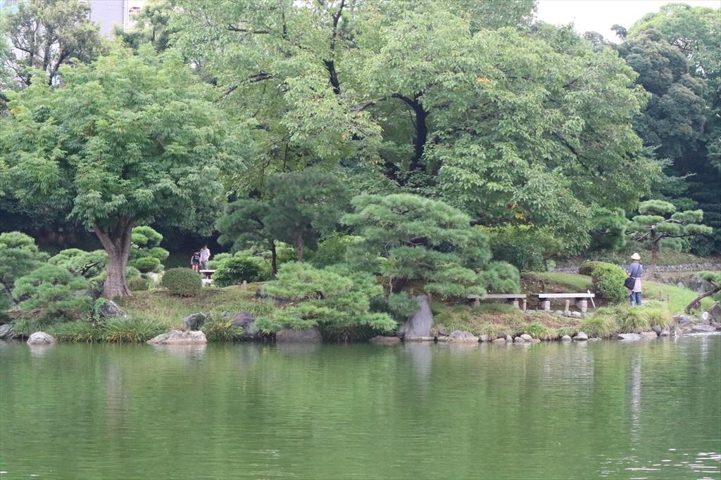 美しい池の景観(1)_3