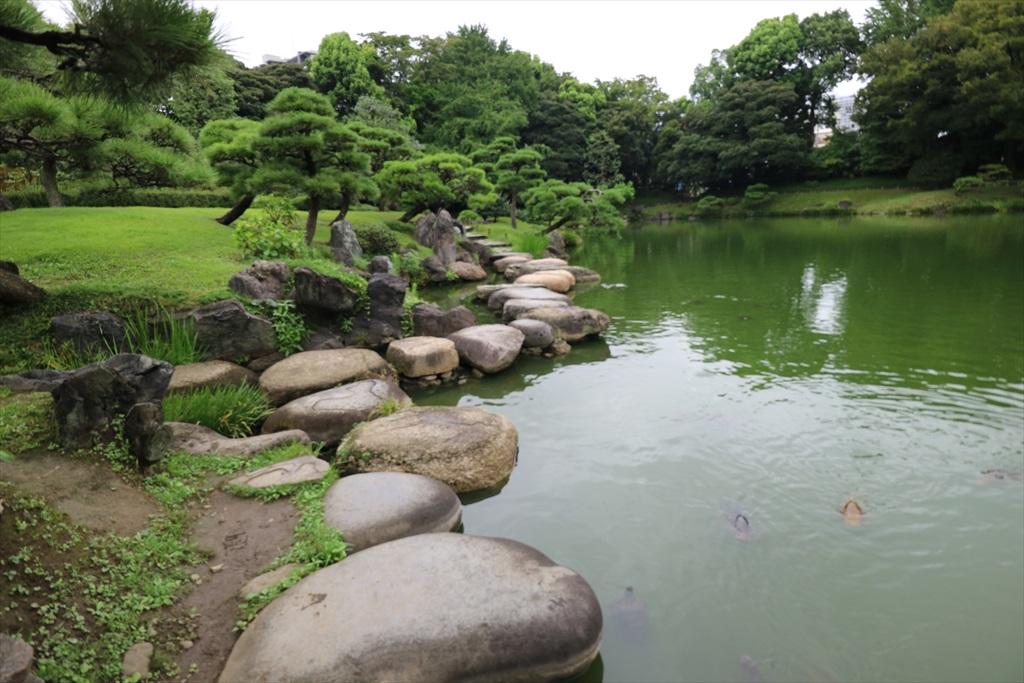 美しい池の景観(1)_5
