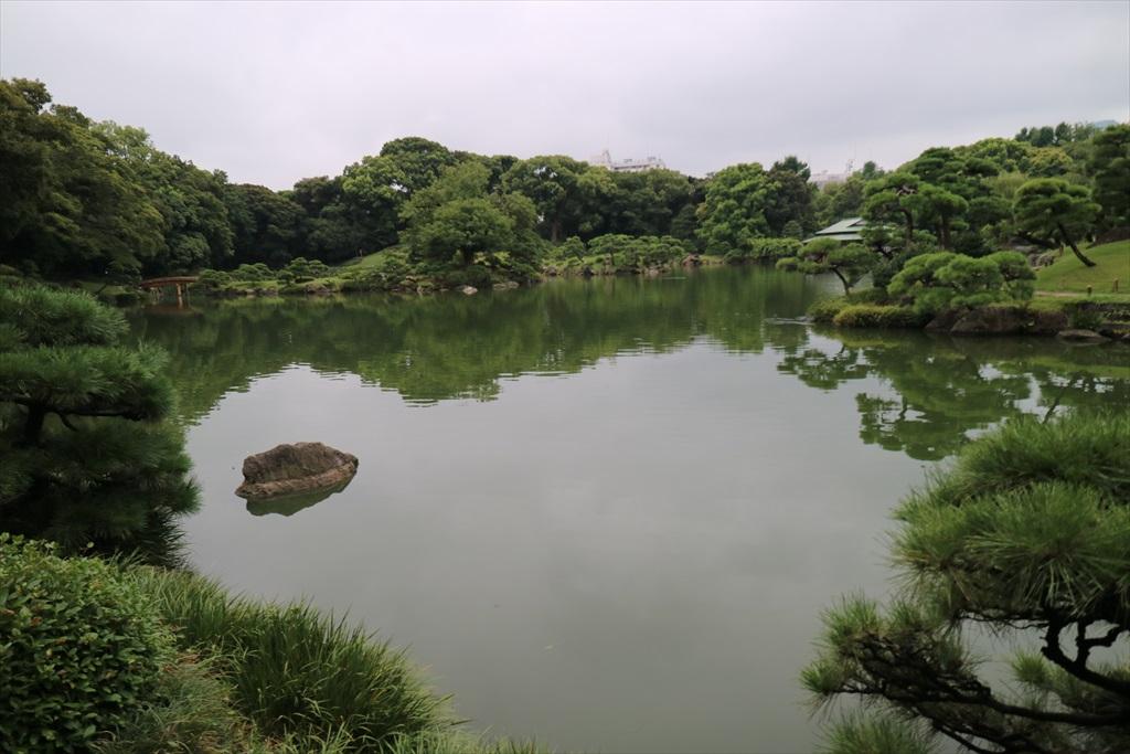 美しい池の景観(1)_8