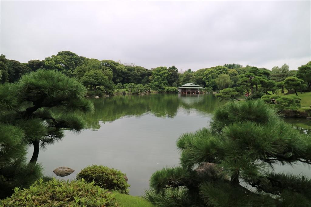 美しい池の景観(1)_9