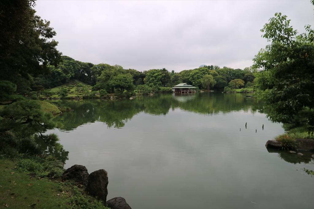 美しい池の景観(1)_11