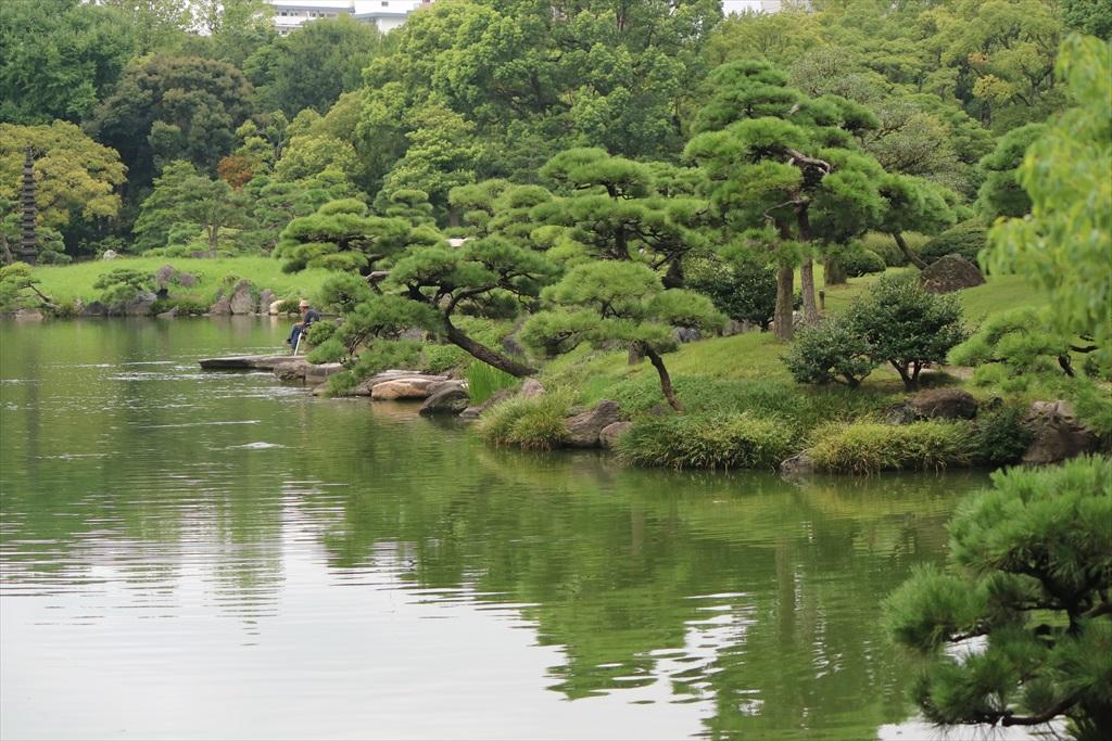 美しい池の景観(1)_13
