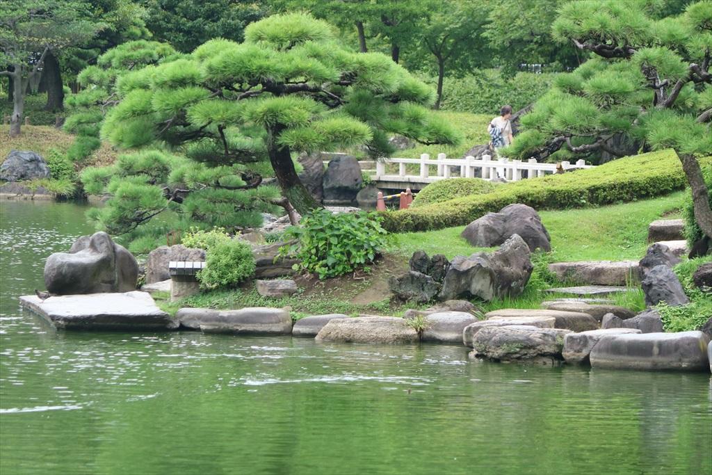 美しい池の景観(2)_3