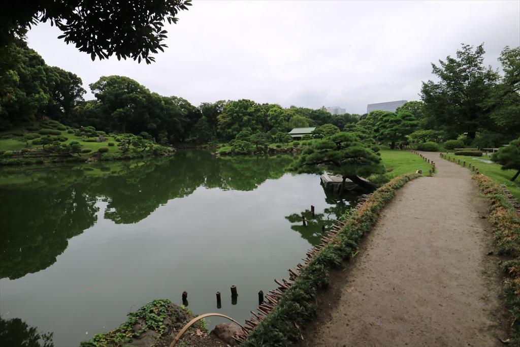 美しい池の景観(2)_6