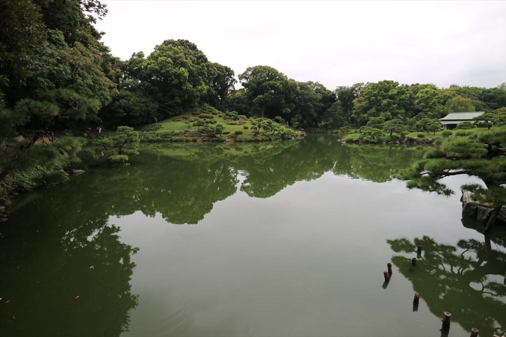 美しい池の景観(2)_7