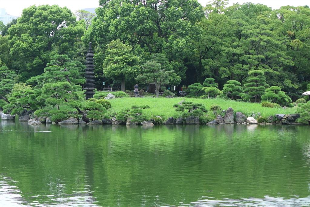 美しい池の景観(2)_13