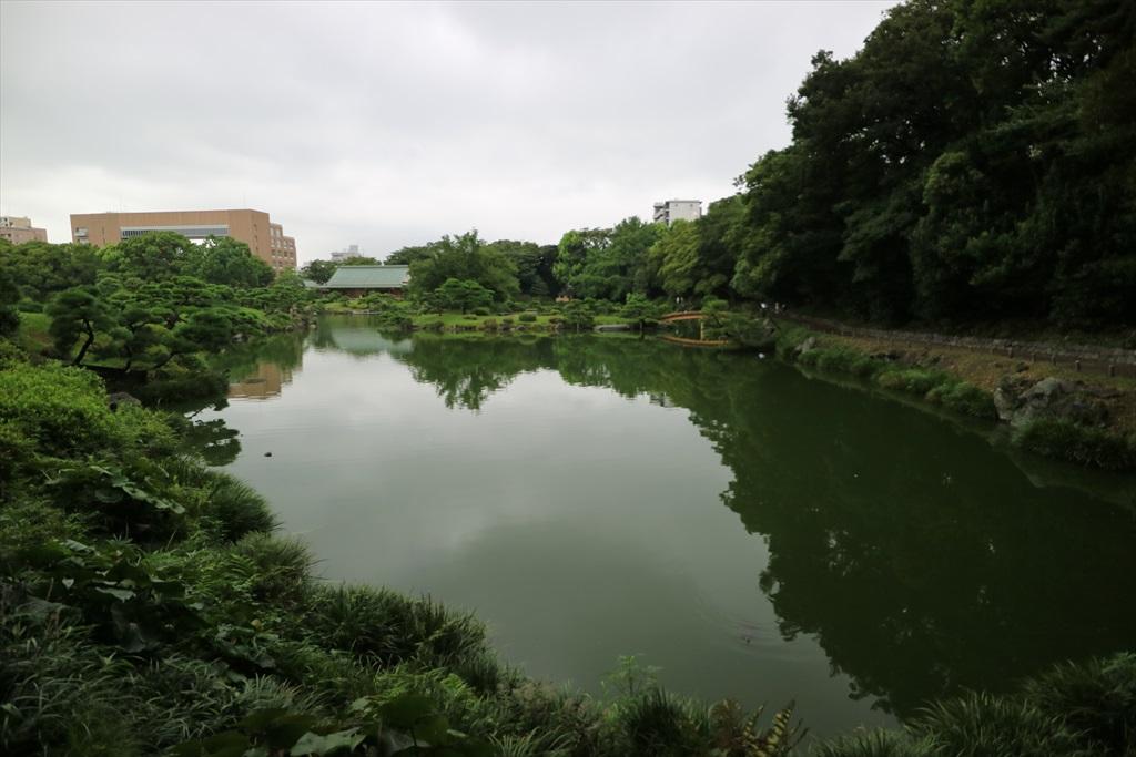 再び池沿いの小道に戻る_1