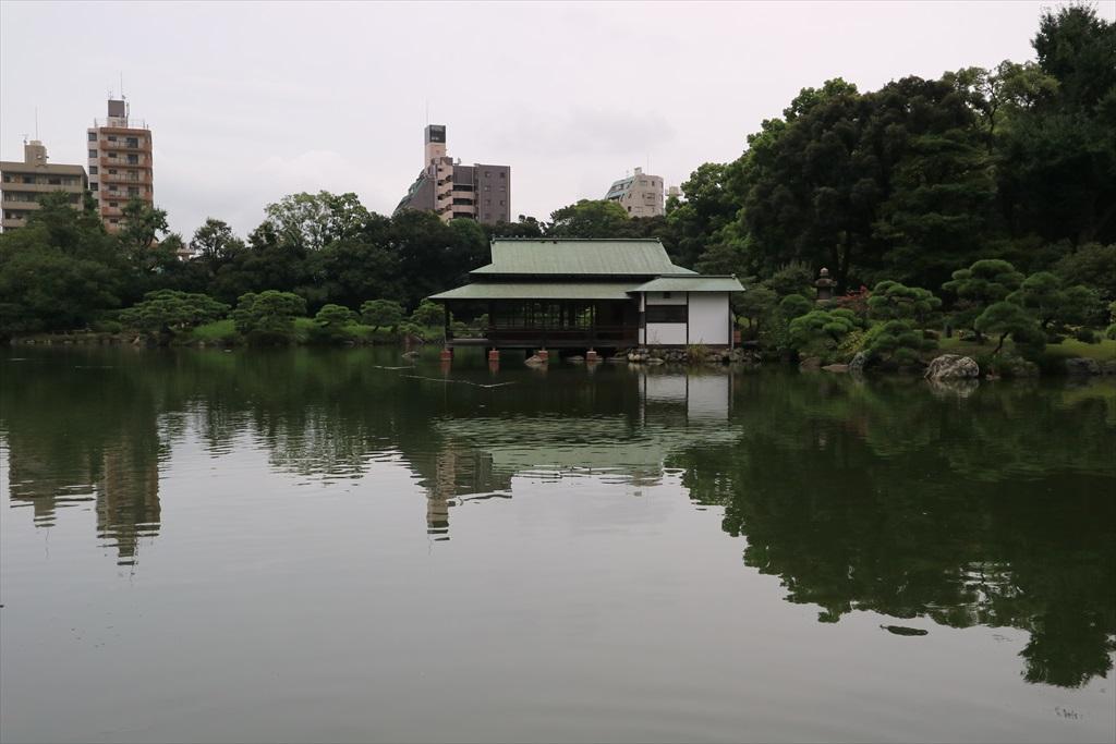 美しい池の景観(4)_1