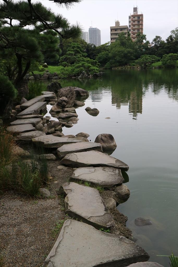 美しい池の景観(4)_2