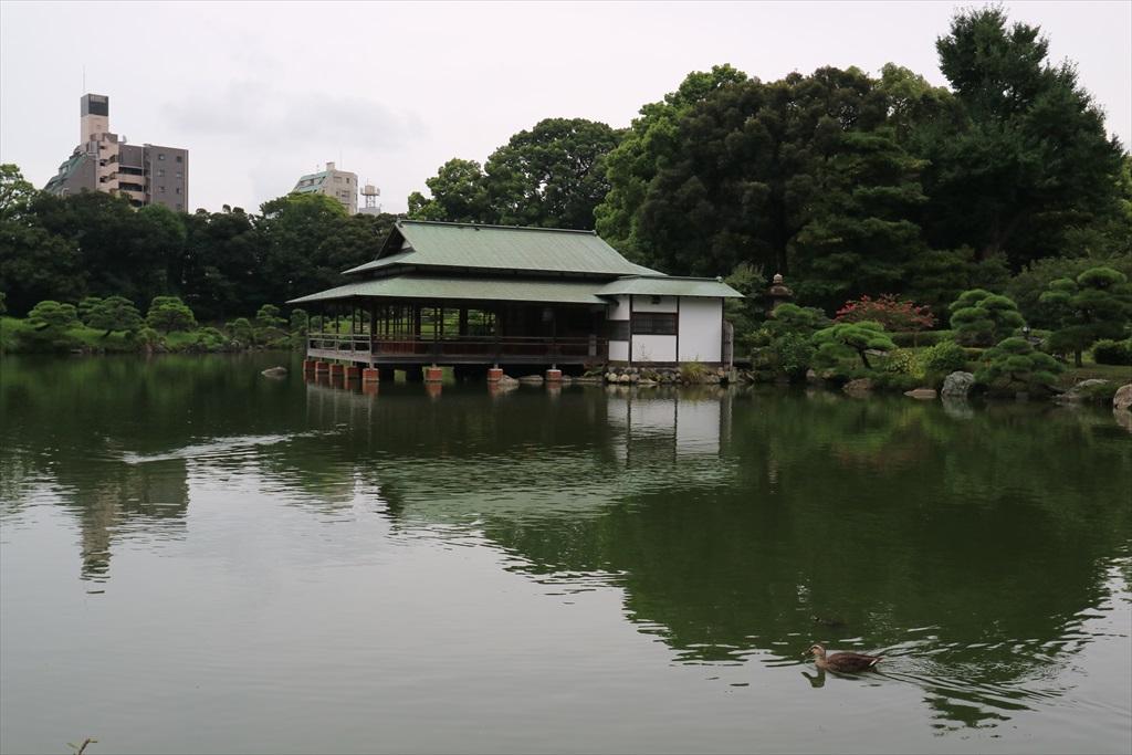 美しい池の景観(4)_6