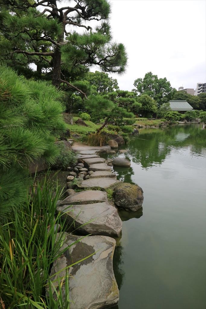 美しい池の景観(4)_8