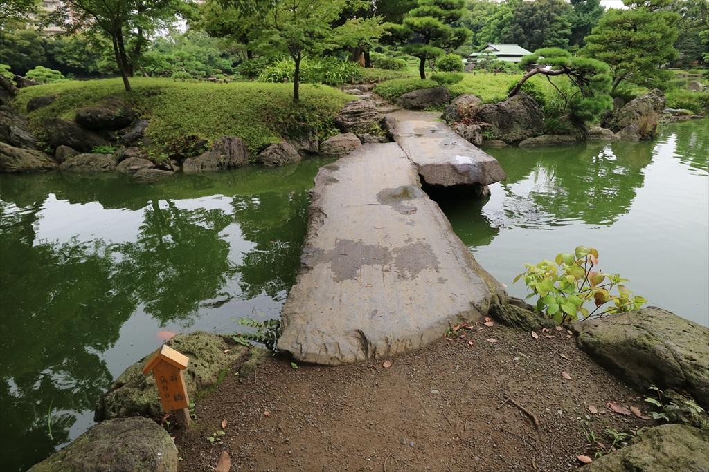美しい池の景観(4)_21