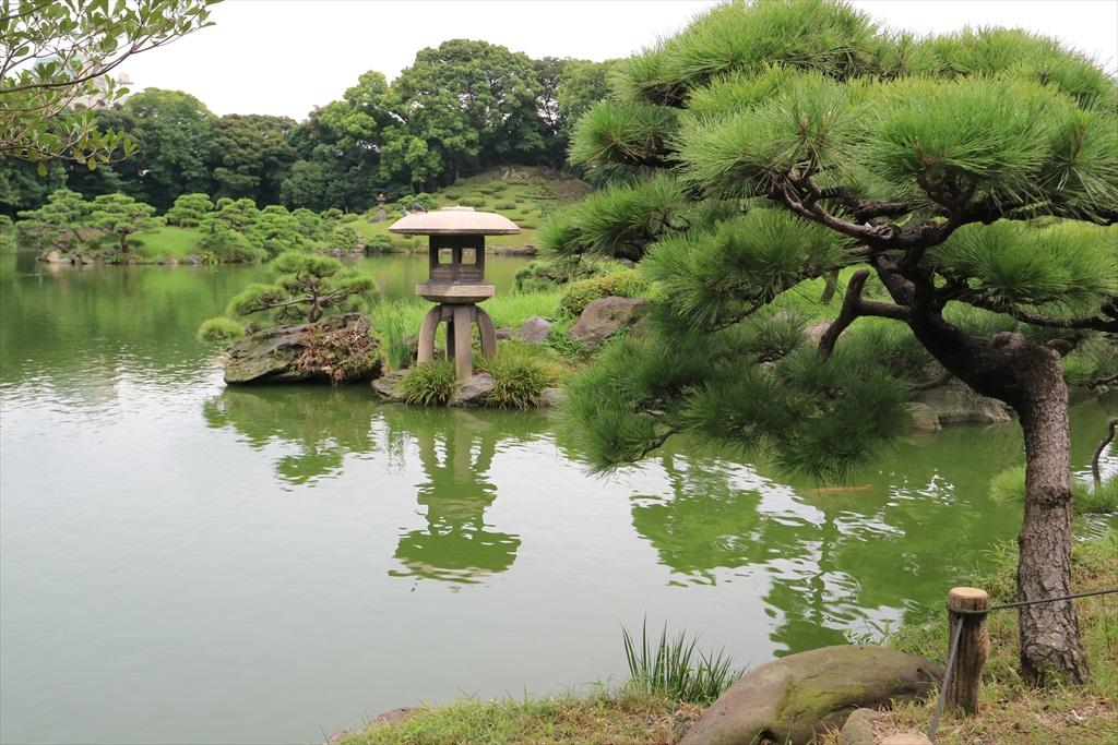 美しい池の景観(4)_25