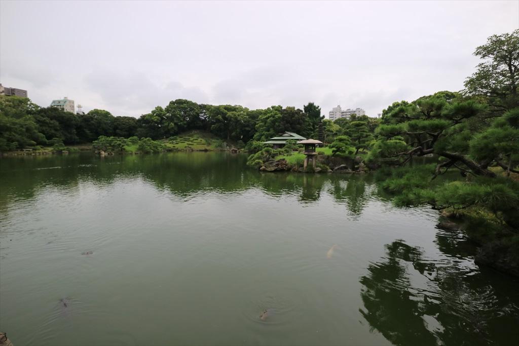美しい池の景観(4)_29