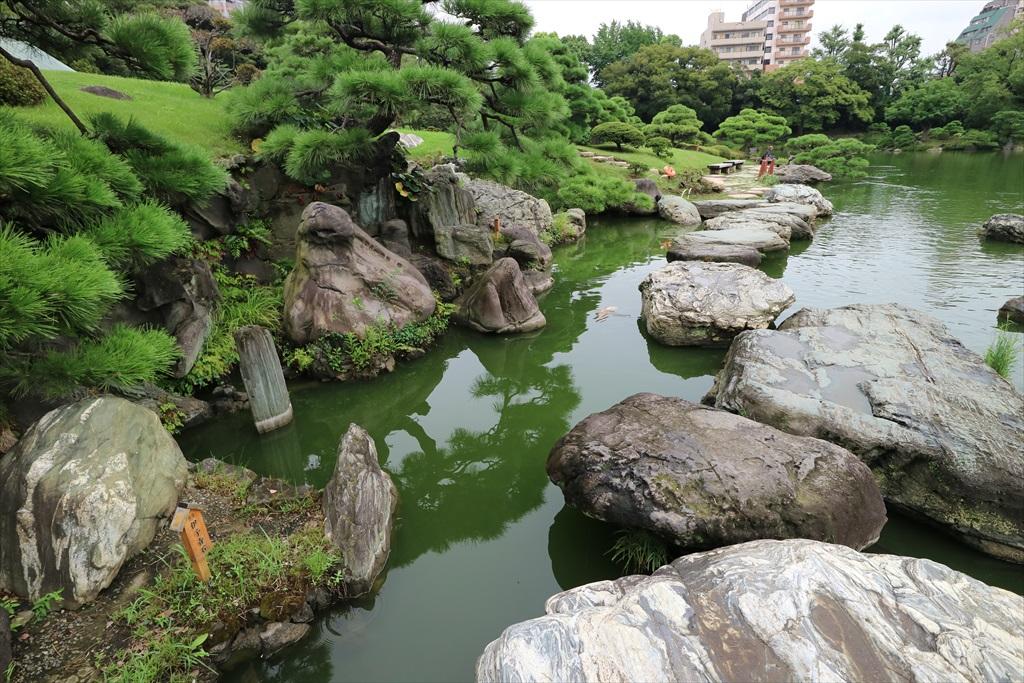 美しい池の景観(4)_30