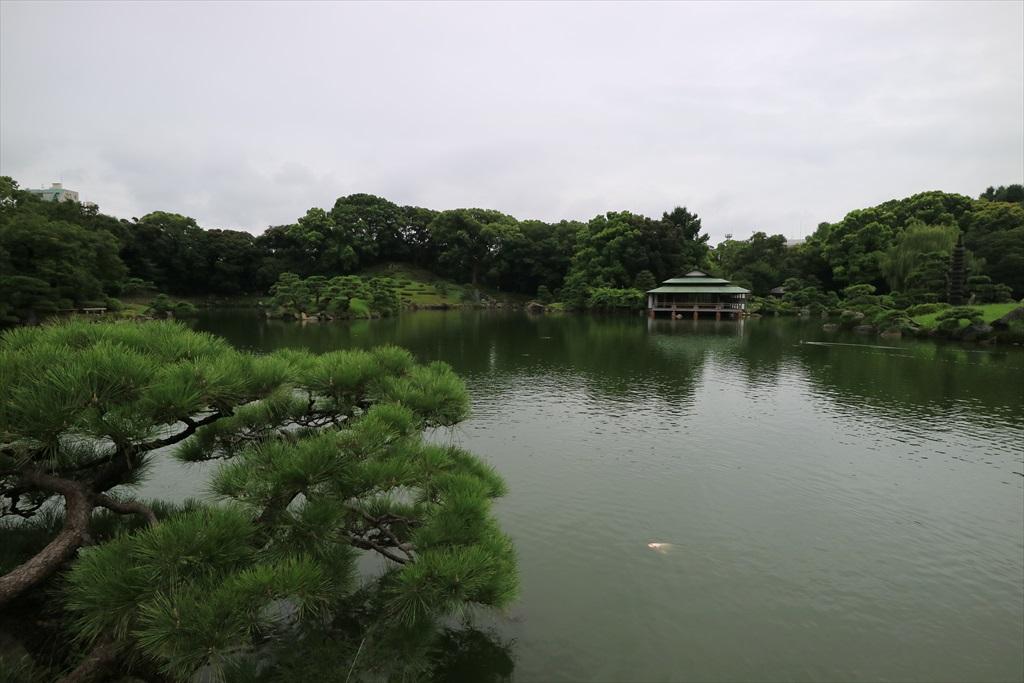 美しい池の景観(4)_31