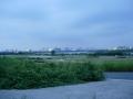 150829淀川堤防から梅田方面を望む