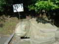 150920かめの石像と由来