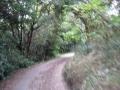 150921公園内の細い悪路を抜ける