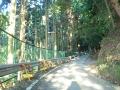 151003逢坂峠への激区間前