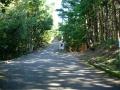 151003今日は本山寺の方へ上る