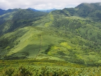 南暑寒岳への登山道、高配がきつくロープが張ってある