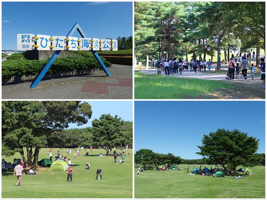 ひたち海浜公園2015①