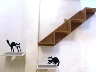 猫カフェ14