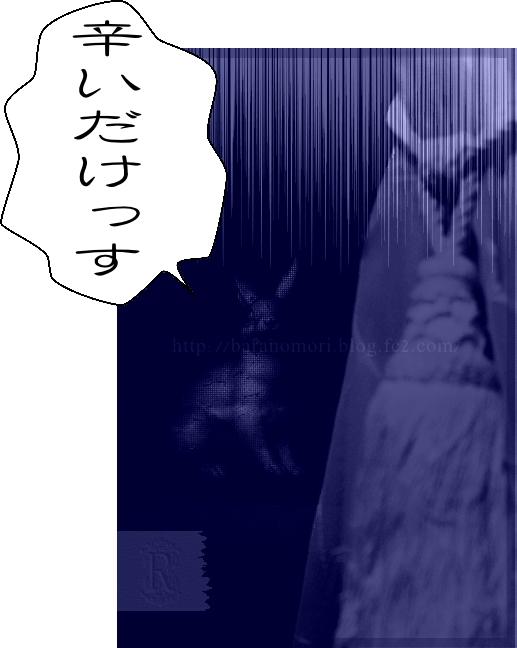 うさぎ 20150830