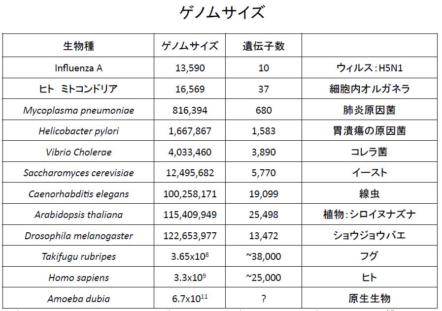20151002ゲノム数