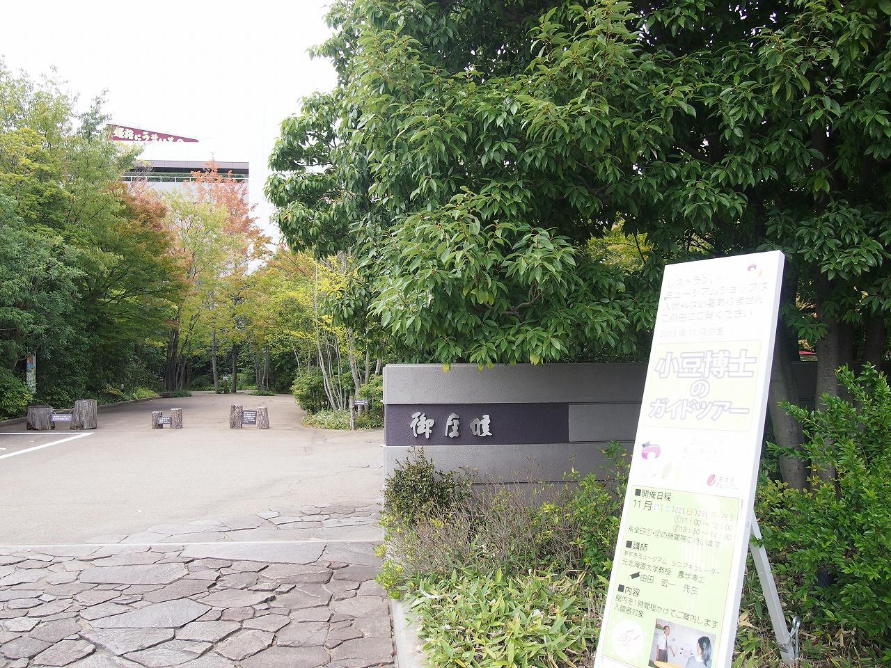 s-P1011701.jpg