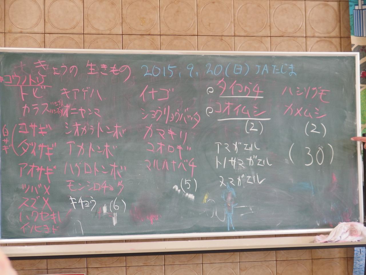 s-P9200120.jpg