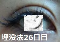 26days.jpg