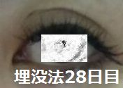 28days2.jpg